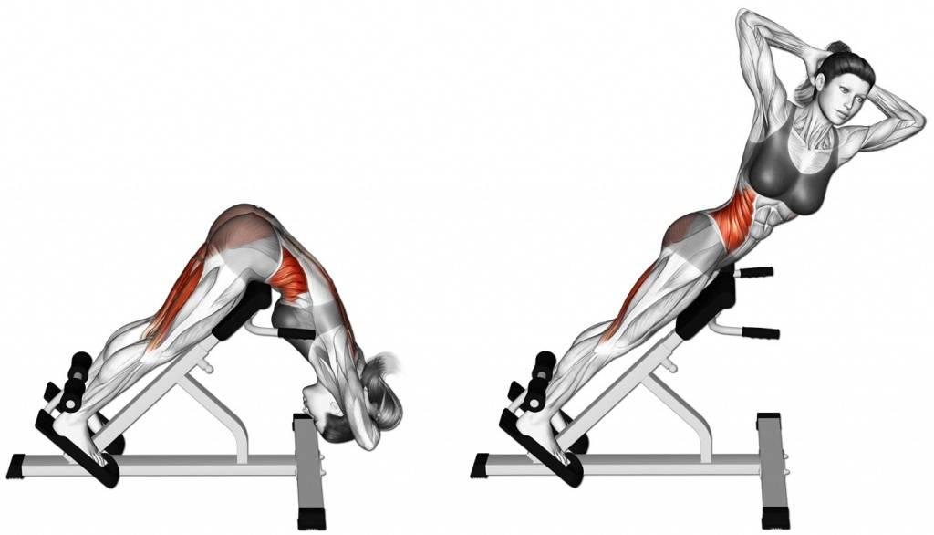 Упражнение гиперэкстензия.jpg